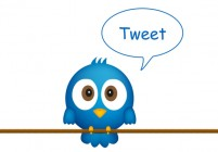 Twitter Bird - How to use Twitter